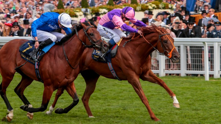 Dreamfield (blue) finished second in the Wokingham at Royal Ascot