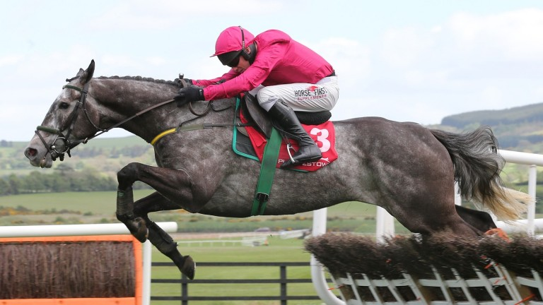 Champoleon, pictured on the way to victory in a maiden hurdle at Punchestown in 2015, lost the race after testing positive for caffeine