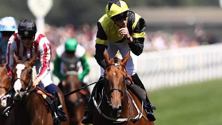 Main Edition: the Albany winner bids for victory in the Duchess of Cambridge Stakes