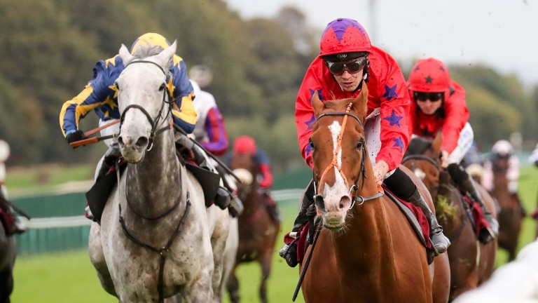 Fastar (right) one to watch at Newcastle