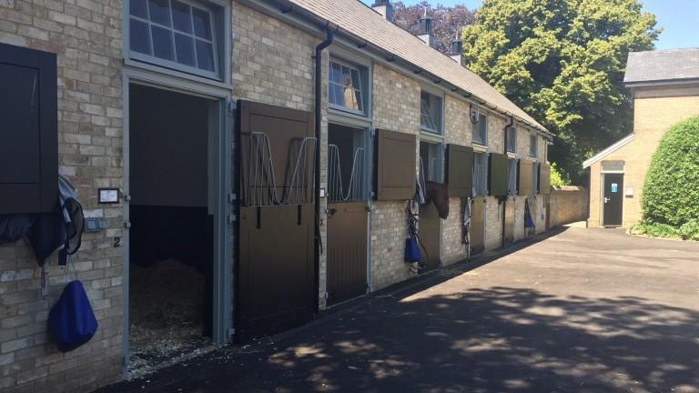 Millionaires Row : the most prestigious part of Sefton Lodge
