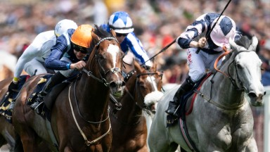 Accidental Agent (near side) wins Ascot's Queen Anne Stakes from Lord Glitters