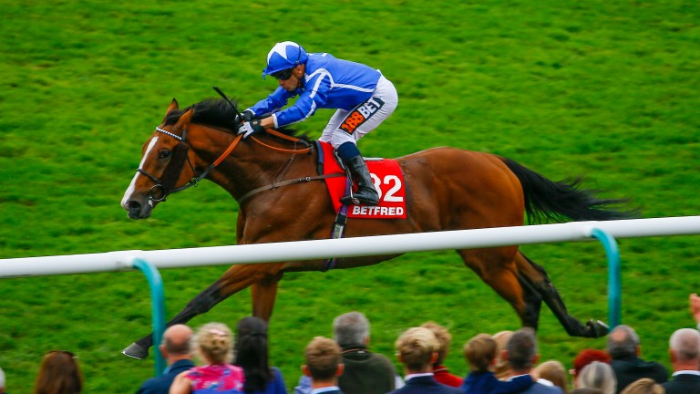Withhold: makes first appearance since Cesarewitch triumph last October
