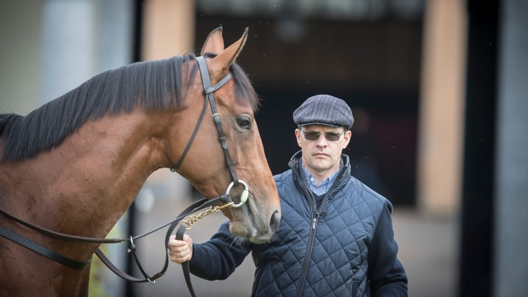 Aidan O'Brien with Saxon Warrior, who chases Group 1 glory in the Juddmonte International