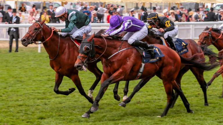 Merchant Navy (purple) holds off the late charge of City Light to land the Diamond Jubilee Stakes