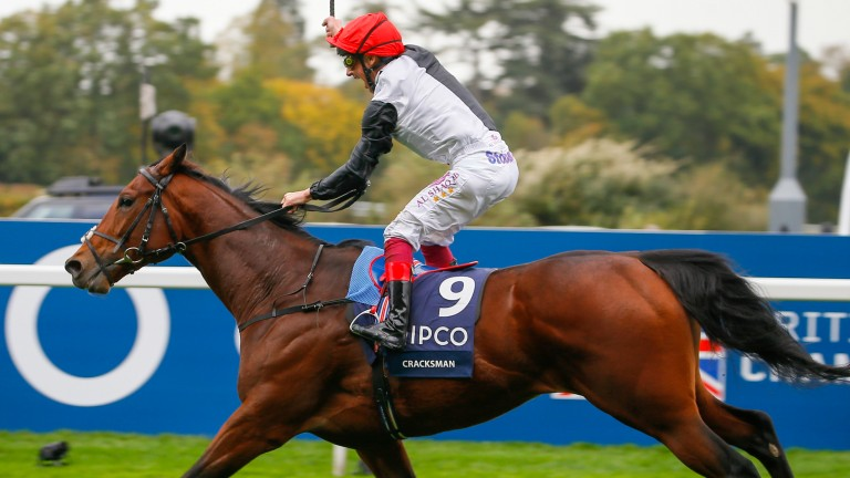 Cracksman: won Epsom's Blue Riband Trial for John Gosden, who is likely to saddle Uncle Bryn tomorrow