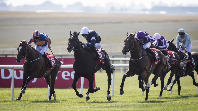 Latrobe (centre): fends off the challenge of Saxon Warrior (right) and Rostropovich at the Curragh