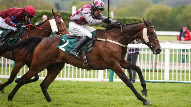 Barel of Laughs and Alex Edwards winning their second Timico Mixed Open Gold Cup at Cheltenham in May