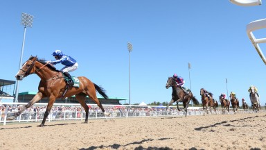 WITHHOLD (Robert Winston) wins the Stobart Rail & Civils Northumberland Plate at NEWCASTLE 30/6/18Photograph by Grossick Racing Photography 0771 046 1723