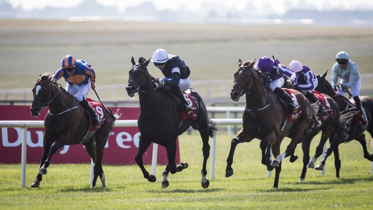 Dee Ex Bee (right) is no threat to the principals in the Dubai Duty Free Irish Derby