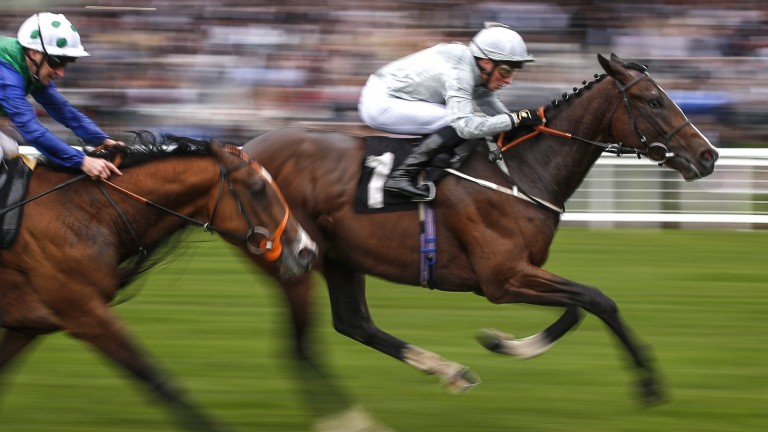 Blown By Wind: set to saddle top weight at York