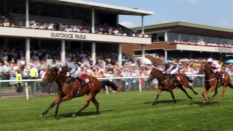 Beyond Desire: Queen Of Desire's dam won at the track for Varian in 2012