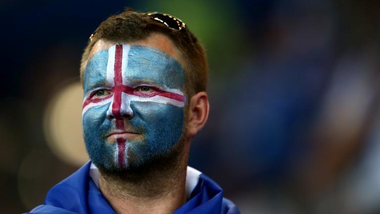 An Icelandic fan