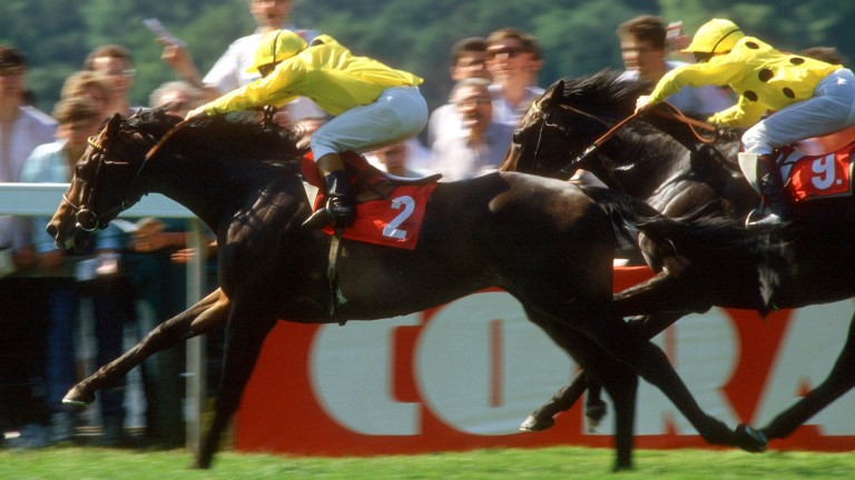Mtoto and Michael Roberts swoop past Reference Point and Steve Cauthen in the Eclipse Stakes of 1987