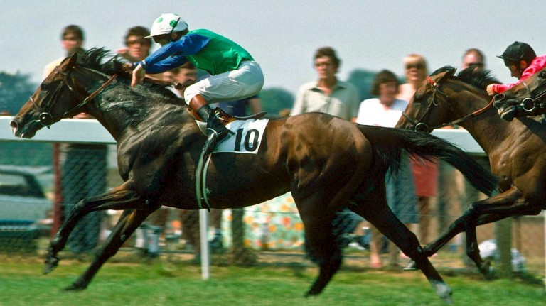 The future supersire Sadler's Wells gains his only British success from Time Charter in the Eclipse of 1984