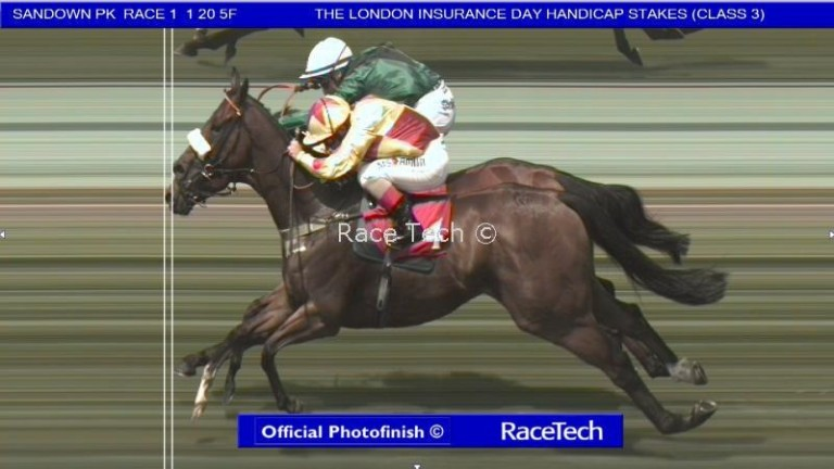 Sandown: Rio Ronaldo (near) was wrongly called the winner initially from Vibrant Chords (green)