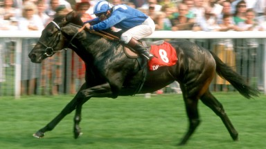 Dayjur and Willie Carson winning the 1990 Nunthorpe Stakes
