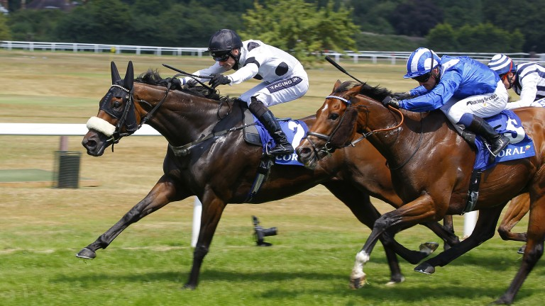 Judicial posted a Group 3 success at Sandown in July