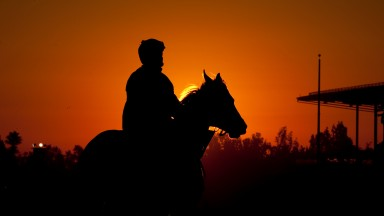 Early morning track work ahead of the Breeders Cup at Santa Anita, California30.10.12 Pic: Edward Whitaker