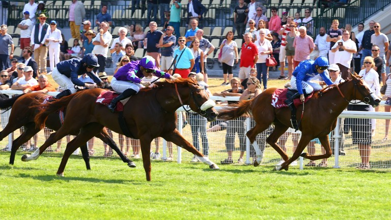Intellogent (noseband) edges out Cascadian (right) by a short neck with Gustav Klimt third