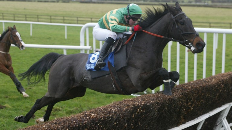 Le Coudray: top-class performer over hurdles and chases