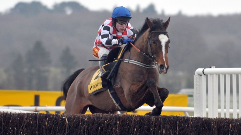 The Giant Bolster: popular chaser is one of the best jumpers by Black Sam Bellamy