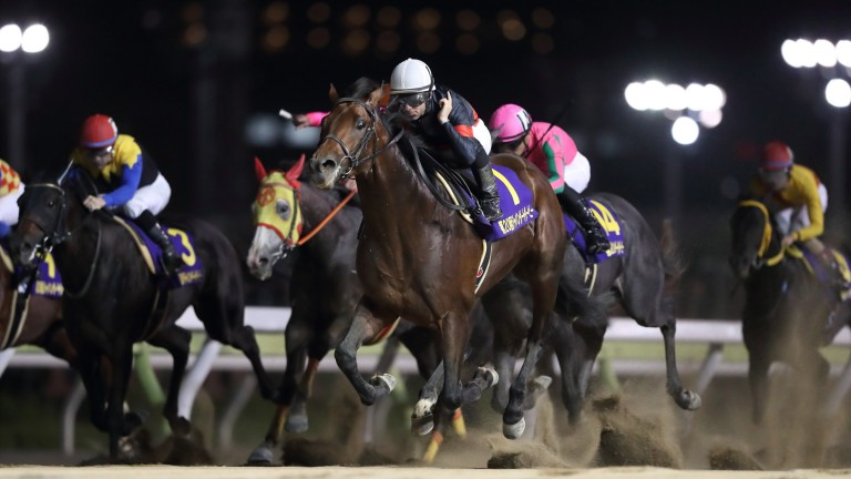 Le Vent Se Leve (Mirco Demuro, white cap) runs down his rivals in the Japan Dirt Derby at Ohi