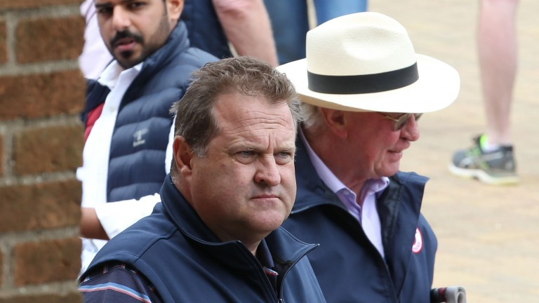 Tom Goff: the Blandford Bloodstock agent signed for the top two lots on day one