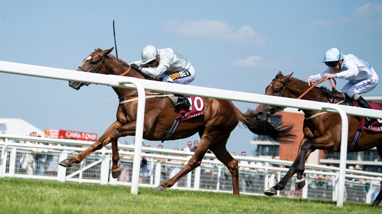 Communique and Poet's Prince dominate the finish of Newbury's London Gold Cup