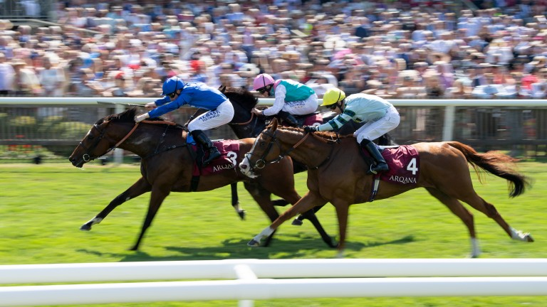 Game winner: Best Solution defeats Mirage Dancer (far) and Duretto (near) in the Princess of Wales's Arqana Racing Club Stakes for Godolphin, Pat Cosgrave and Saeed Bin Suroor