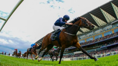 September - Ryan Moore wins from Nyaleti - John Egan and Masar - William BuickThe Chesham Stakes (Listed Race)     Royal Ascot 24/6/2017©cranhamphoto.com