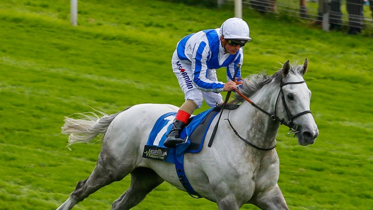 Thundering Blue finished second to Euchen Glen in the John Smith's Cup