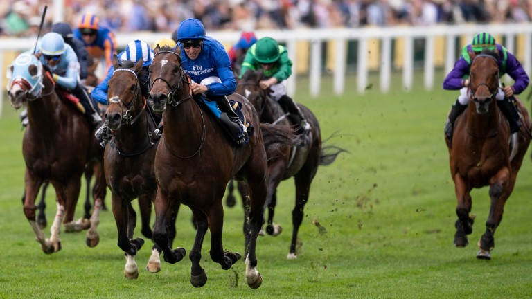 Finsbury Square (extreme right of picture) finished a fine fourth in the King's Stand at Ascot behind Blue Point