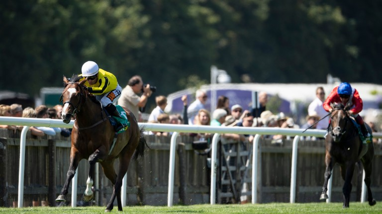 Pretty Pollyanna: will take on Coventry winner Calyx in the Prix Morny