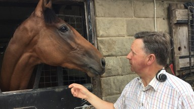 Tim Easterby thinks highly of St Leger hope Wells Farhh Go