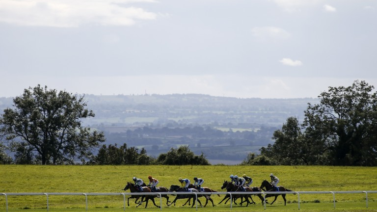 Down the back straight at Bath, where racing takes place today