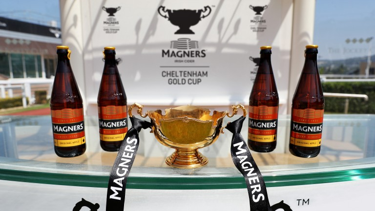 Magners: new sponsors of the Cheltenham Gold Cup