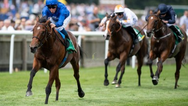 Quorto: could be top-class for the rejuvenated Godolphin operation
