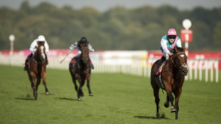 Frankel streaks out in front on the second outing of his career – he wore a Grakle on all his starts