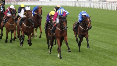 Stratum (right) finishes third to stablemate Lagostovegas at Royal Ascot
