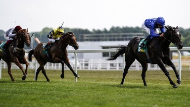 Pillar-to-post success: Emotionless lands the Listed Steventon Stakes at Newbury in easy fashion under William Buick