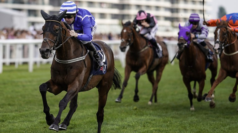 Stratum draws clear of his rivals in the JLT Cup at Newbury