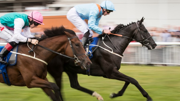 Marie's Diamond and James Doyle win at the Curragh