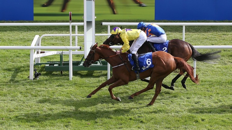 Sea Of Class gets up close home to win the Irish Oaks under James Doyle