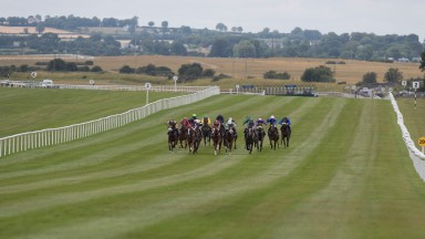 The field charge for home at the Curragh