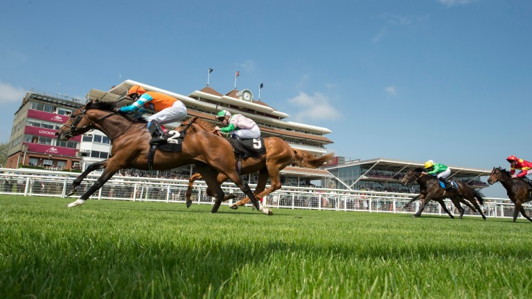 Cunco gives Frankel his first winner with victory at Newbury