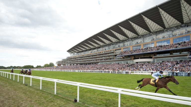 Harbinger and Olivier Peslier romp home by 11 lengths in the 2010 King George