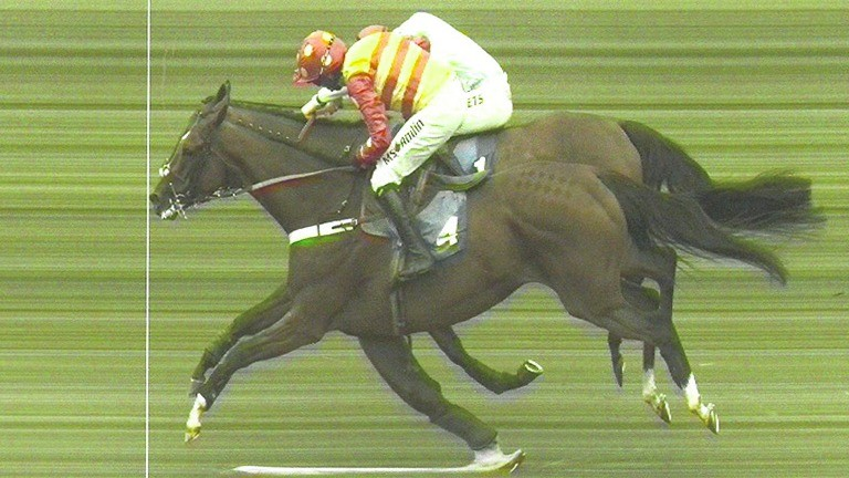 The official photo-finish print involving Royal Village (near side) and Whoshotwho at Market Rasen