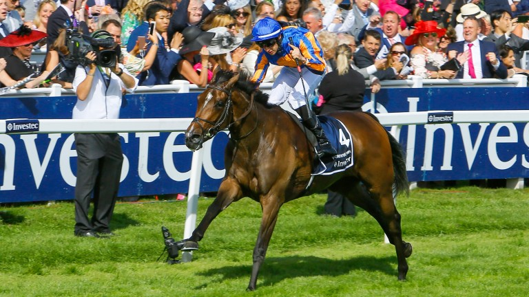 Forever Together: heads the O'Brien assault on the Yorkshire Oaks