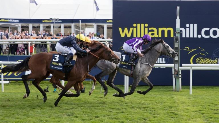 Capri: dual Classic winner is nearing a return